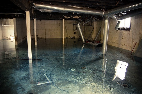 city of toronto will subsidize your basement flood proofing